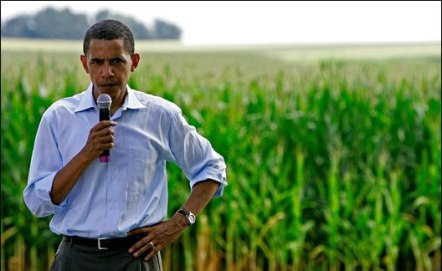 Will Barack Obama regulate genetically modified organism?